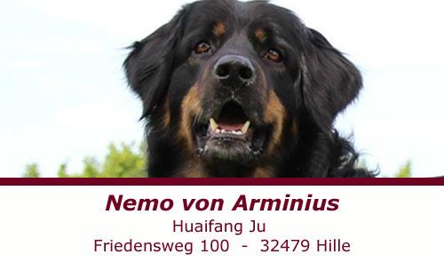 Nemo von Arminius
