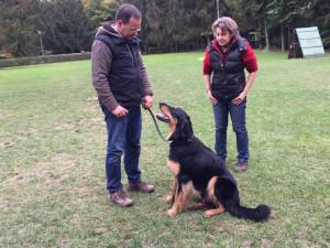 Amadeo von der Edelmühle mit Hundeführer Ulrich und Körmeisterin K. Wesche